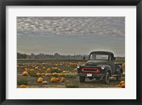 Framed Black Truck In Pumpkin Patch 2