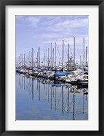 Framed Marina Reflections