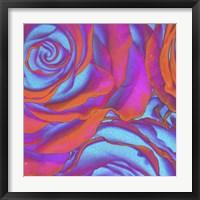 Framed Pink Orange Blue Roses