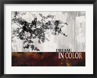 Framed Dream in Color