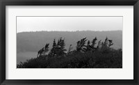 View from the Cape II Framed Print