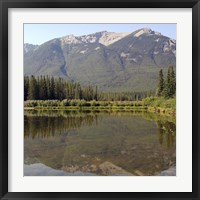 Reflections II Framed Print