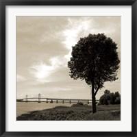 Silhouette II Framed Print
