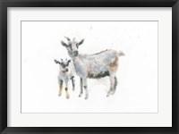 Framed Goat and Kid