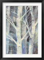 Winter Birches II Framed Print