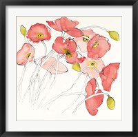Framed Black Line Poppies II Watercolor