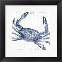 Framed Seaside Crab