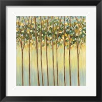 Framed Awakening Tree Tops