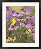 Framed Butterfly & Finch Amongst Flowers