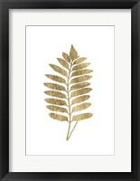 Framed Graphic Gold Fern III