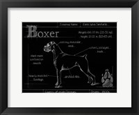 Framed Blueprint Boxer