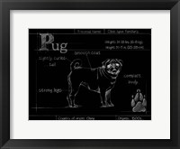 Framed Blueprint Pug