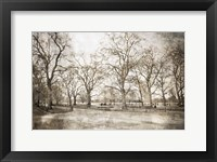 Framed Hyde Park I