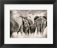 Framed Vintage Elephant
