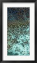 Framed Caribbean - A