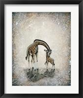 Framed My Love for You - Giraffes