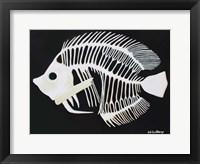 Framed Butterfly Fish Bones