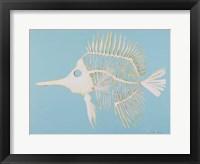 Framed Longnosed Butterfly Fish Bones