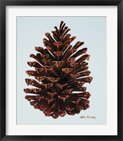 Framed Guilded Pinecone