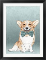 Framed Corgi Dog
