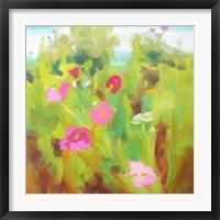 Framed Bright Field 1