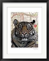 Framed Kansas City Tiger