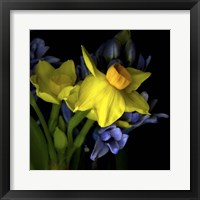 Framed Spring Flowers 1