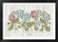 Framed Vibrant Row of Hydrangea on Wood