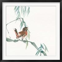 Framed Russet Sparrow