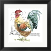 Fun at the Coop V Framed Print