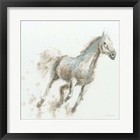 Stallion I Framed Print