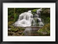 Framed Moss on the Rocks at Elakala Falls