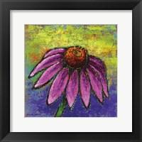 Framed Echinacea