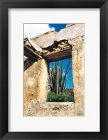 Framed Cactus View