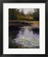 Framed Oregon Water Lilies