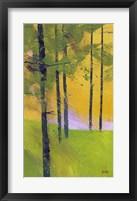 Framed Simple Spruce