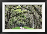 Framed Old South