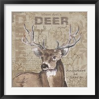 Where Does a Deer Play Framed Print