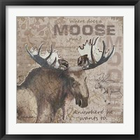 Where Does a Moose Run Framed Print