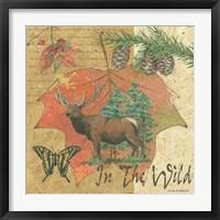 Wild Elk Framed Print