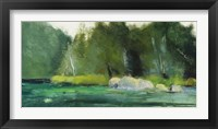 Framed Lily Pond & Dark Woods