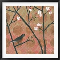 Cherry Blossoms II Framed Print