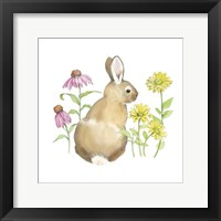 Framed Wildflower Bunnies I Sq
