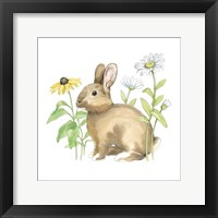 Framed Wildflower Bunnies II Sq