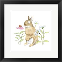 Framed Wildflower Bunnies IV