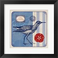 Sea Bird I Framed Print
