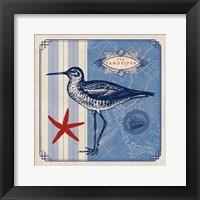 Sea Bird II Framed Print