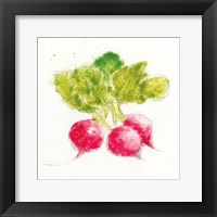 Garden Delight X Framed Print