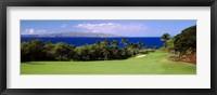 Framed Wailea Golf Club, Maui, Hawaii