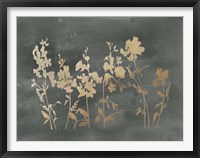 Framed Gold Foil Flower Field on Black - Metallic Foil